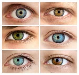 Yeux Pers Rare : yeux quelle est la couleur la plus sexy adg ~ Melissatoandfro.com Idées de Décoration