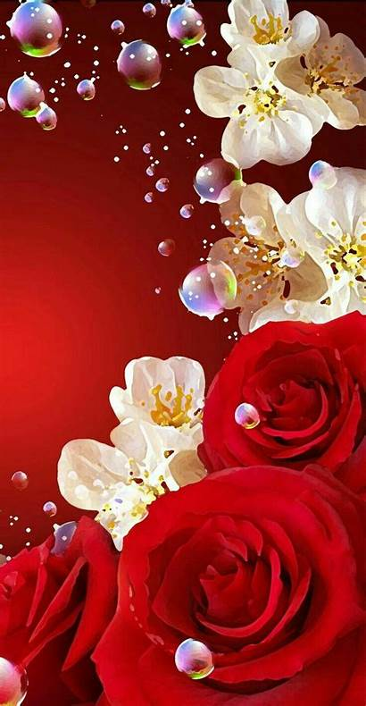 Flower Heart Phone Backgrounds Flowers Nature Wallpapers