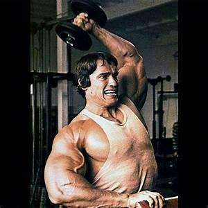 86 best Arnold Schwarzenegger images on Pinterest