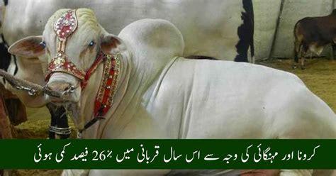 Coronavirus & Inflation Reduces Qurbani In Eid-ul-Adha ...