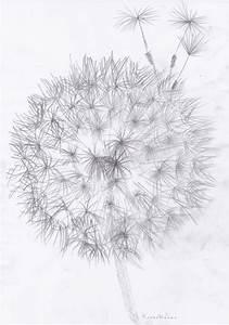 Blumen Verschicken Auf Rechnung : die 25 besten ideen zu blumen malen auf pinterest gemalte blumen blumen anmalen und tole malerei ~ Themetempest.com Abrechnung