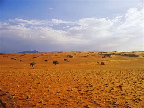 desert landscapes desert landscape wallpaper conservatives pee themselves with joy over loss of american jobs
