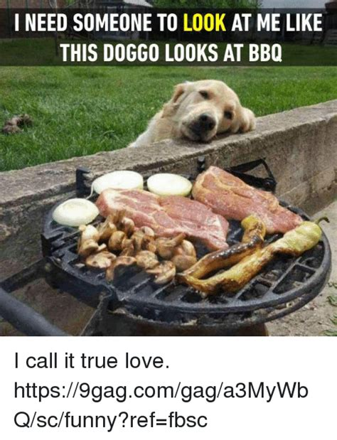 Funny Bbq Meme - i need someone to look at me like this doggo looks at bbq i call it true love