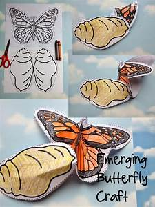 Sweet Tea Classroom: Butterfly Life Cycle Craft ...