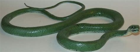 grass snake green lifelike rubber replica 46 inches