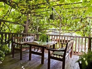 Pergola Mit Wein Bepflanzen : ferienwohnung sittnerhof agriturismo s dtirol meraner land meran firma sittnerhof herr ~ Eleganceandgraceweddings.com Haus und Dekorationen