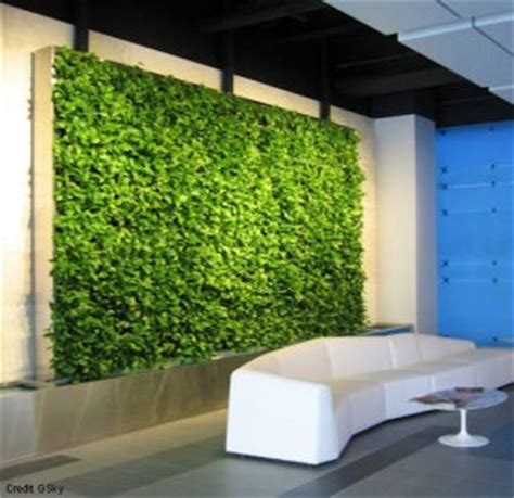 living walls cubical plants contemporary plant styles