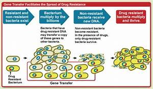 Causes Of Antimicrobial  Drug  Resistance