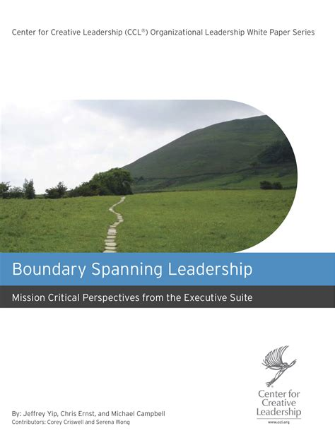 leadership emerging descriptions  books articles