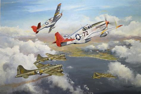 red tails red tail escorts