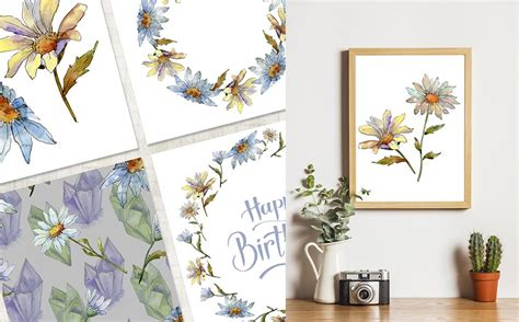 cool white chamomile png watercolor set illustration