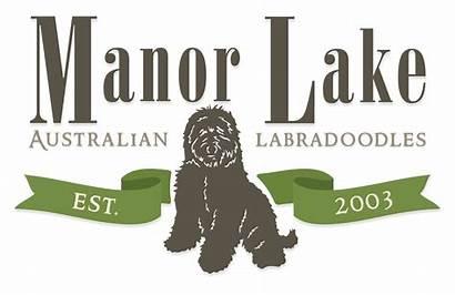 Manor Lake Labradoodles
