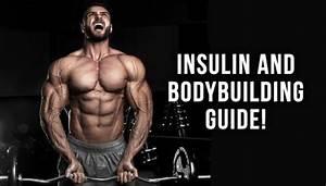 Insulin And Bodybuilding Guide