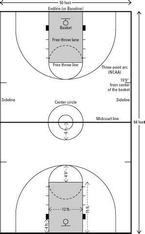 lines  dimensions   basketball court  ft