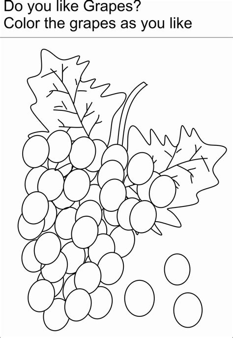 grapes coloring printable page  kids