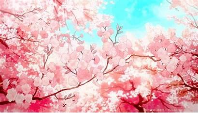 Blossom Cherry Anime