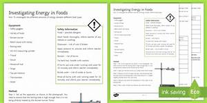 Energy In Foods Investigation Instruction Sheet Print