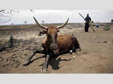 La sequía amenaza con una grave hambruna en el sur de África