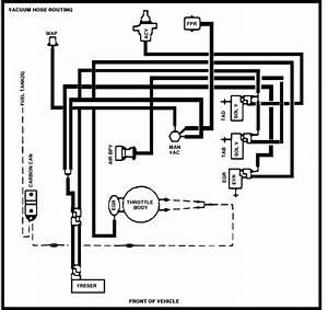 A 1989 E150 302 With Manifold Injection  Intake Manifold