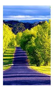 Pathway Wallpapers Most Beautiful Places In The World ...