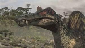 Spinosaurus Vs Carcharodontosaurus Planet Dinosaur | www ...