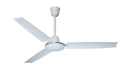 pictures of ceiling fans omega apollo ceiling fan practicality and great look