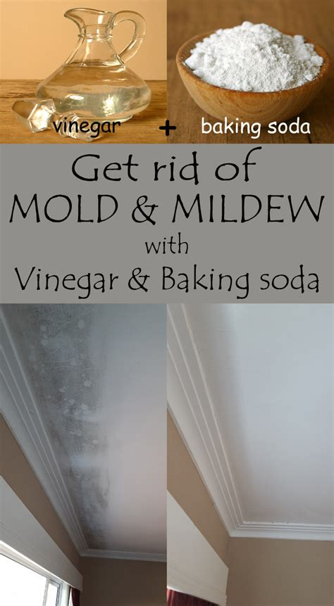 mold mildew soda baking vinegar rid cleaning bathroom cleaner solutions walls after hacks removal happens healthydailytips spring remove spilled she