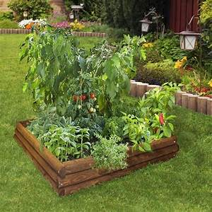 Photos Of Raised Bed Vegetable Garden