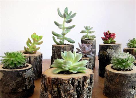 interior essence planters