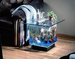 Mod U00e8le D U00e9coration Aquarium Maison