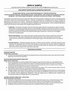 director level resume resume ideas With executive director resume