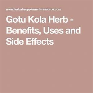 Gotu Kola  U2013 Side Effects And Benefits