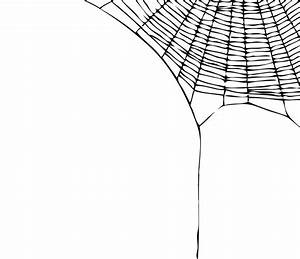 Spider Web Corner Clipart - Clipart Suggest