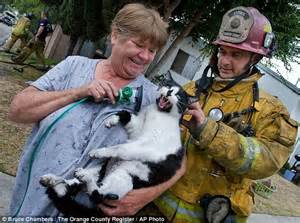 Heartwarming Rescue Of Pets By Caring Firefighters After