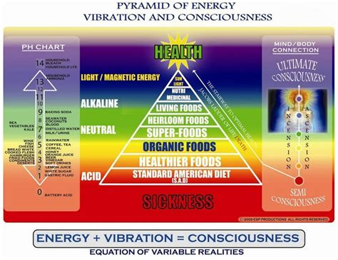 frequence cuisine energy vibration consciousness superfood holistic