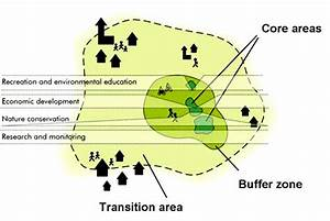 Biosphere Reserve Zonation In Core Area  Buffer Zone  And