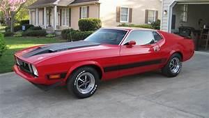 1973 Ford Mustang Mach 1 Fastback | F79 | Dallas 2012
