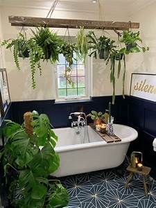 20, Houseplants, That, Would, Love, To, Live, In, Your, Bathroom, In