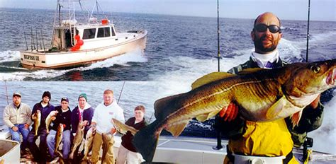 How To Fish For Cod From A Boat by Sea Charters Cape Cod Cape Cod Charter Fishing Ayucar