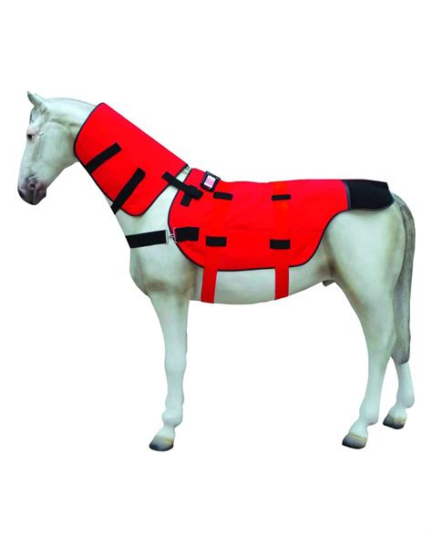 bios bio stimulation pferd equusir