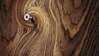 Wood Tree 1080 1920 Backgrouns Wallpapers Backgrounds