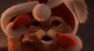 Cat Christmas GIF - Find & Share on GIPHY