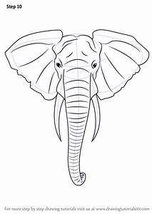 Learn How to Draw an Elephant Head (Zoo Animals) Step by ...