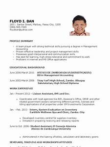 sample resume for fresh graduates accounting science With career objective for accounting fresh graduate