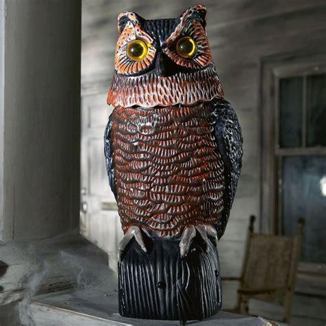 motion sensing owl bird  pest control  green head