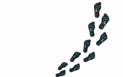 Steps Foot Walking