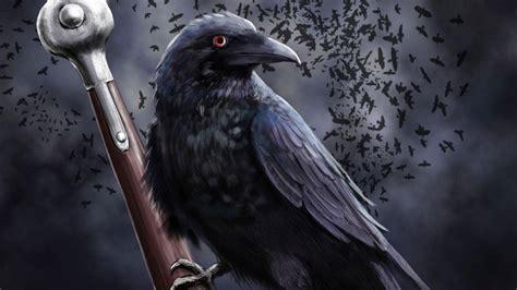 corbeau bureau corbeau sur l 39 épée hd papier peint de bureau écran large
