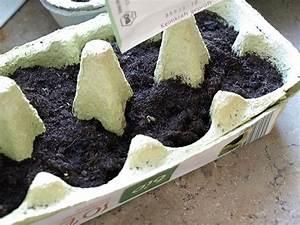Feldsalat Setzlinge Pflanzen : erde anna fankhaenel produktdesign ~ Frokenaadalensverden.com Haus und Dekorationen