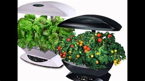 Where To Buy Indoor Herb Garden Kit-youtube