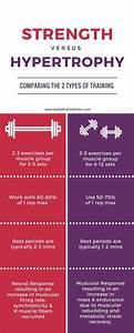 Barbell In The Kitchen  Hypertrophy Vs Strength Training